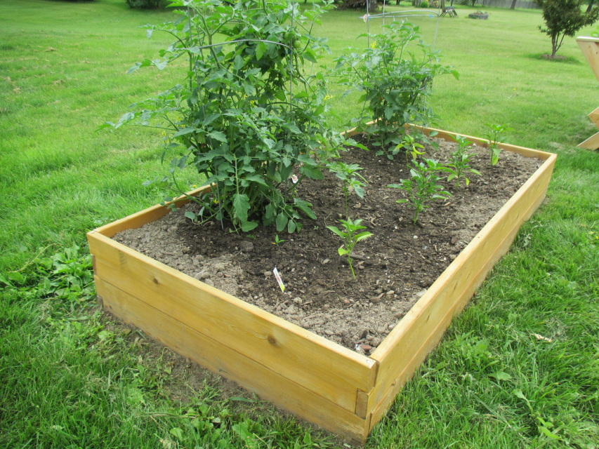 X Raised Garden Bed